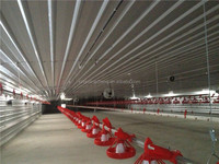 closed type environmental controlled broiler poultry farm shed design