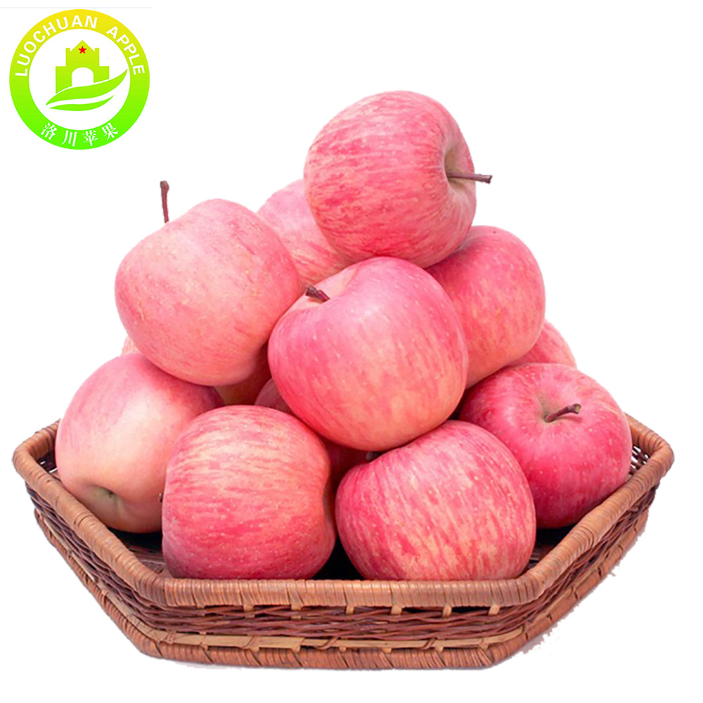 To buy apples wholesale imported fruits names fuji apple red star apple for fruits suppliers in malaysia