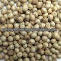 VIETNAM WHITE PEPPER