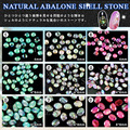 Newest natural seashell Nail Art DIY Decoration Nail Jewelries