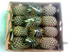Queen and Cayen, fresh Pineapple, best price