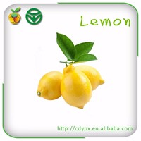 2015 organic fresh sour fruit yellow lemon fruit specification for exporting