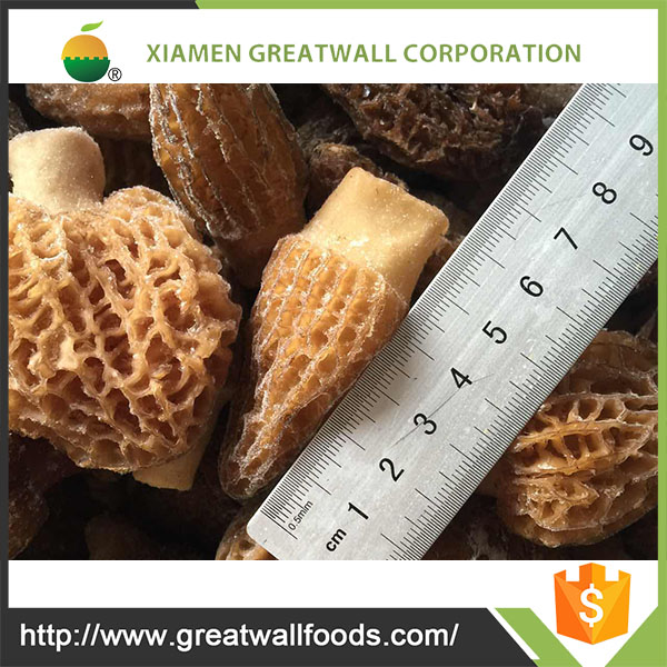 Frozen Morel Mushrooms Whole