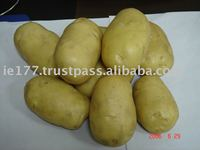 Quality Potato At Most Competitive Price