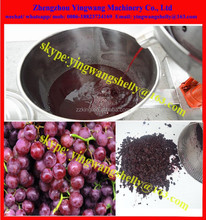 304 stainless steel household grape press machine with filiter