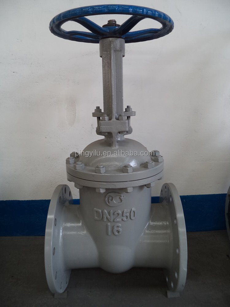 China Valve Supplier Standard Manual PN16 Flanged Stem Gate Valve for Oil and Gas