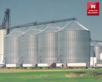 Low Cost Farm Used Starch Sugar Coffee Bean Storage Silo / Corn Oats Grain Steel Silo For Sale