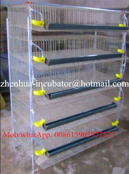commercial quail cage for sale (Lydia : 0086 15965977837)