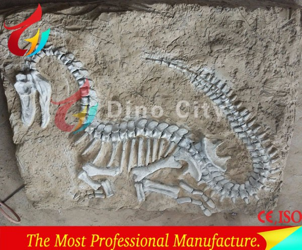 Museum Quality Dinosaur Fossil T-rex Excavation Kit For Kids