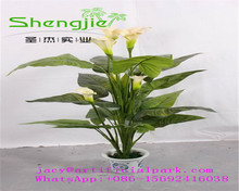 SJLJ 0797 Hot selling decorative artificial plant , artificial flower plant for ornament
