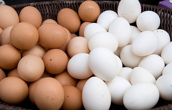 WHITE AND BROWN TABLE EGGS