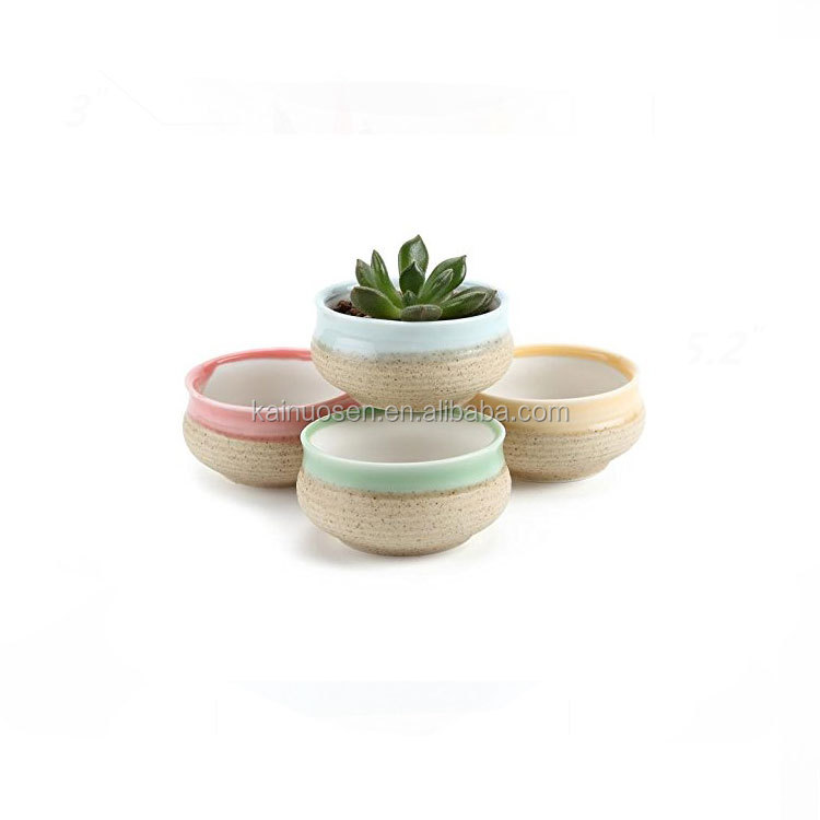 ceramic Cactus Plant Pot Flower Pot