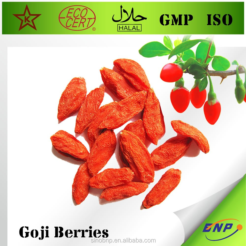 Top quality competitive price Import Xinjiang Organic Goji Berry