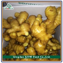 Fresh dried ginger price