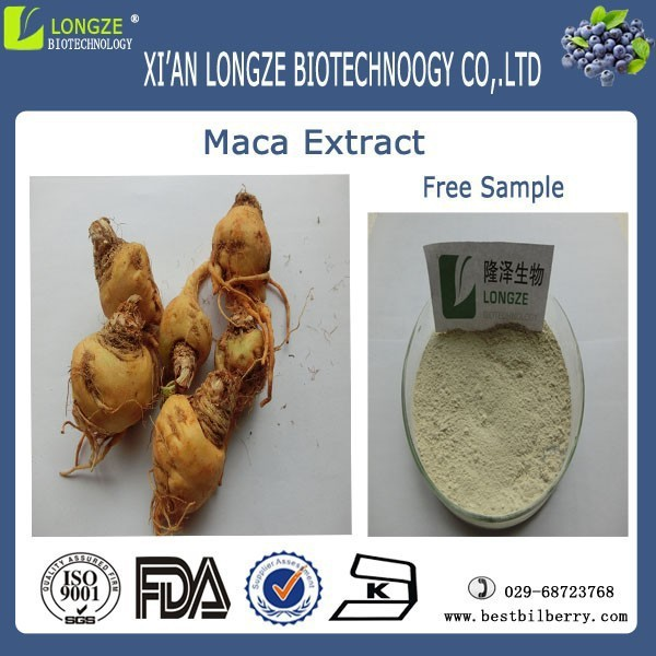 Sex medicine maca extract 4:1 powder,maca root powder, maca extract