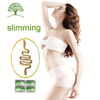 Chinese Factory Directly Supply Most Salable Herbal Slimming Products
