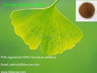 Ginkgo biloba Extract 100% natural ,no additive