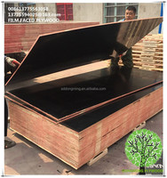 Shuttering Plywood/Waterproof Plywood/Construction Plywood