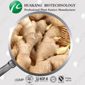 P.E. Price Curcumin Powder Ginger Extract