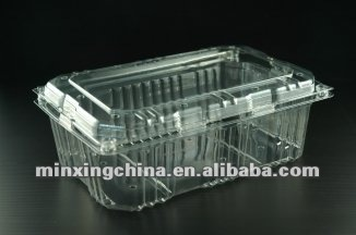 clear PET food container