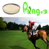 PANGOO probiotics feed supplement to better horse farming environment