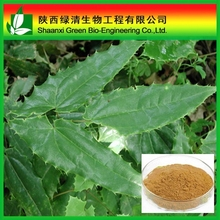 100% Natural Wild Herb Epimedium P.E. Powder Pure Icariin 98%/Horny Goat Weed Extract Icariin/High Quality 98% Icariin Powder