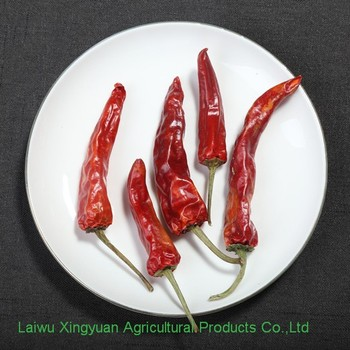 Natural no heavy metal red chili pepper san ying jiao