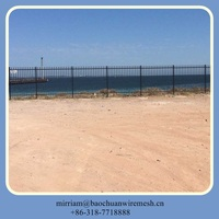 Residential Ornamental Steel Fence For industrial