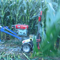 manual corn reaper, gasoline corn harvester, reeds reaper hot selling