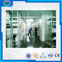 Newest professional vegetable cold room cold storage
