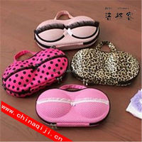 travel bra and panty bag
