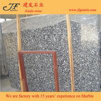 Buy fossilized sea shells in China on Alibaba.com
