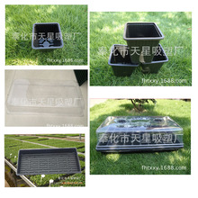fashion popular series nail file plastic coin box
