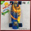 Fish 22 NEW Graphic Complete Plastic Cruiser Skateboards