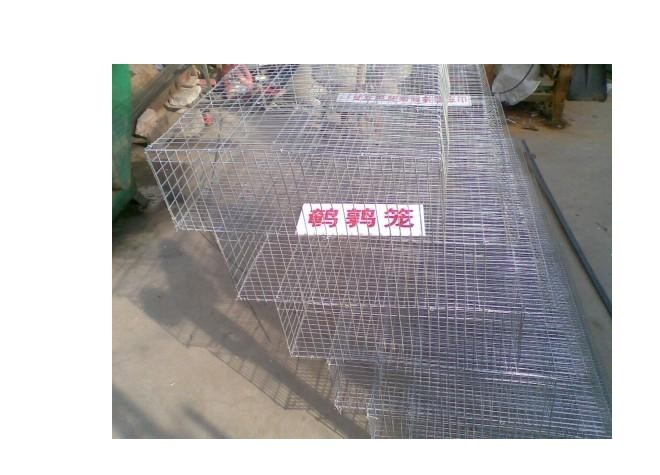 400 pcs 6 layer cage bird quail cage HJ-QCX400