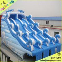 28' Inflatable Dolphin Water Slide
