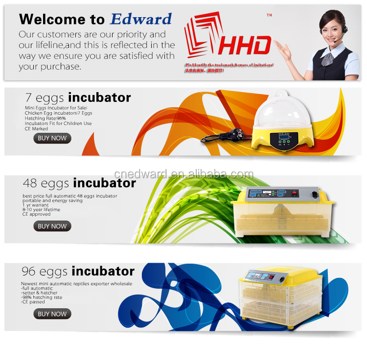 2017 HOME&BUSINESS HHD mini automatic incubators for 7 eggs for sale