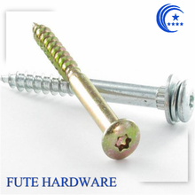 Torx self tapping drywall screw with washer