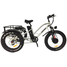 China 500W Lithium Battery 3 wheel Electric Bicycle Tricycle