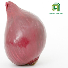 2017 hot selling organic cheap wholesale fresh red bombay onion for import buyers