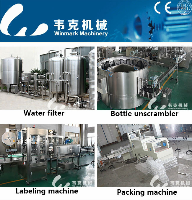 Mineral Water Filling Machine/Line