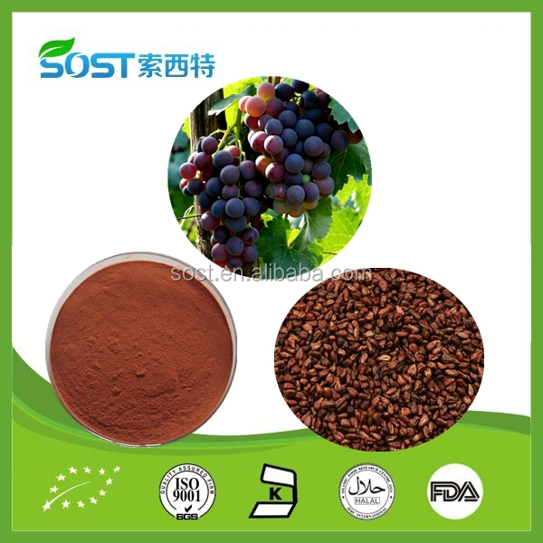 China natural grape seed extract supplier