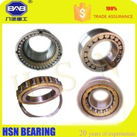 HaiSheng STOCK Cylindrical Roller Bearing NFP6/723.795 SQ1 bearing