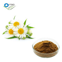 organic chamomile extract //chamomile powder with best price