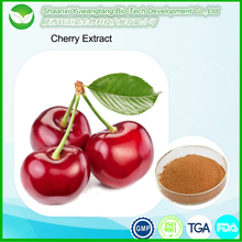Hot product factory price organic Acerola cherry fruit extract powder/ Cherry Extract