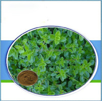 Factory Supply 100% Natural Thyme Extract Thymol Powder from plant extract in China