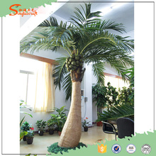 decor artificial coconut palm tree fiberglass palm tree names of leaves in india