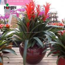 Garden Special-purpose imitation tank round flower plastic pot