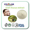 /product-detail/pure-snail-slime-extract-for-skin-care-60551984060.html