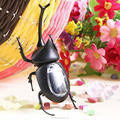 Promotional solar toys beetle solar powered toys for kids